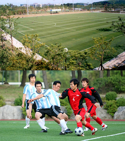 Hyundai Four Seasonal Football Field